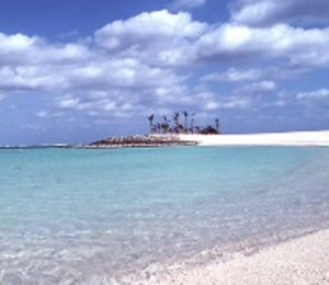 沖縄本島北部のオススメビーチ