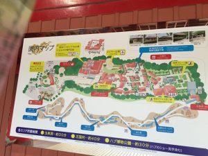沖縄ワールドの施設内マップ